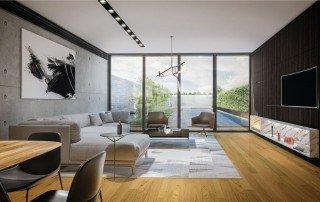 תכנון בית פרטי מבט מהסלון אל הבריכה