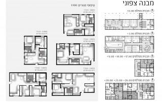 תכניות המבנה הצפוני וטיפוסי הדירות- דיור בר השגה